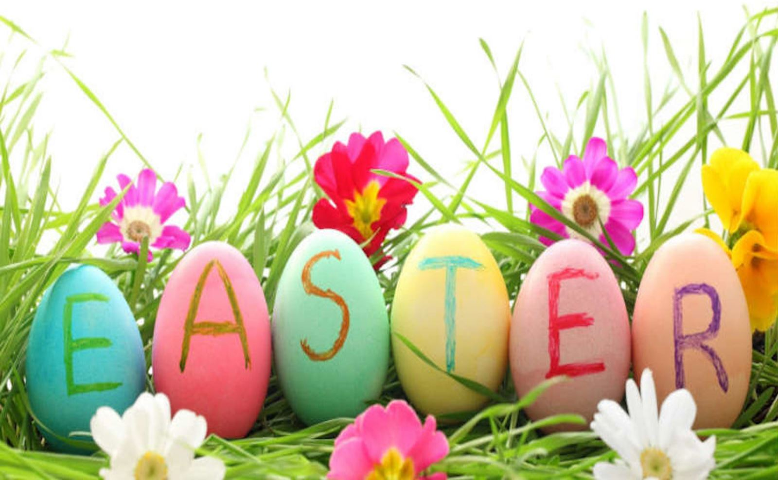 Happy Easter Everyone! - Newquay