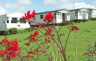 Sun Haven Valley Holiday Park, Mawgan Porth