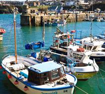 Thumbnail for Newquay Harbour