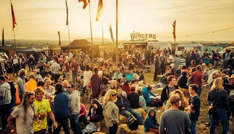 The Little Orchard Cider & Music Festival 2019