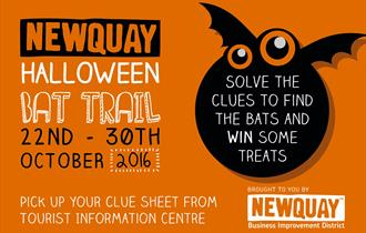 Newquay Halloween Family Bat Trail