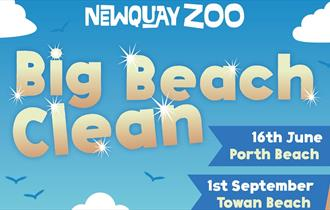 Big Beach Clean with Newquay Zoo