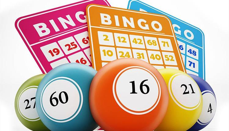 Newquay Lions Prize Bingo at The Griffin Inn