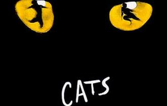 'Cats' the Musical at Newquay Tretherras Academy