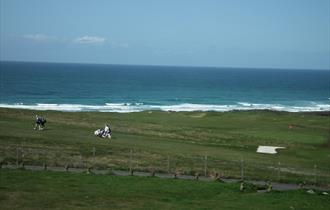 Fistral View Apartments