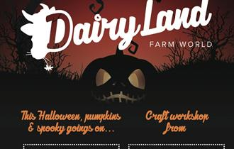 Halloween and Half Term Fun at Dairyland!