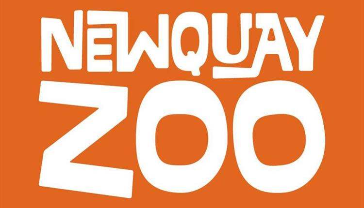 Easter at Newquay Zoo