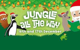 Jungle All The Way with Newquay Zoo