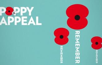 Poppy Appeal Launch at Newquay's Royal British Legion